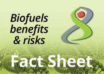 Biofuel - Benefits & Risks