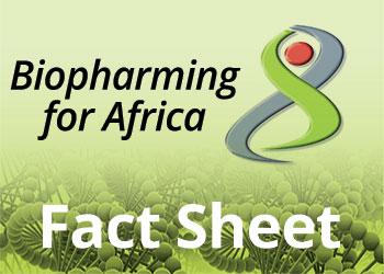 Biopharming for Africa?