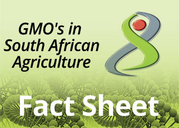 GMO's in South African Agriculture